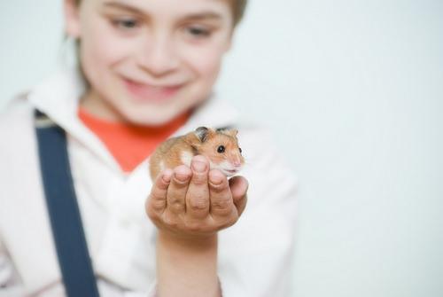 Девочка и мышка