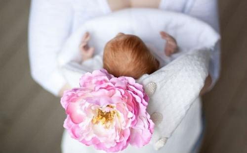 Малыш и цветок
