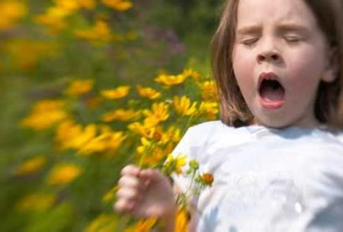 Девочка чихает в поле