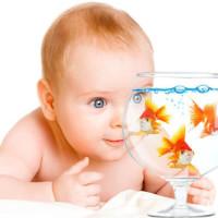 Ребенок и рыбки